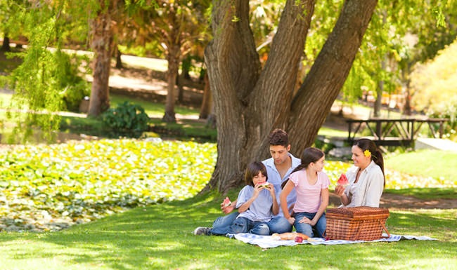 family having a picnic under a tree in the park
